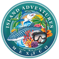 Snorkel Isla Mujeres, Fishing Trip Isla Mujeres, Whale Shark Tour, Isla Contoy Tour | Island Adventures Mexico
